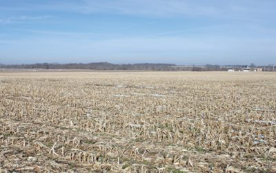 200 Acres State Route 41 Auction