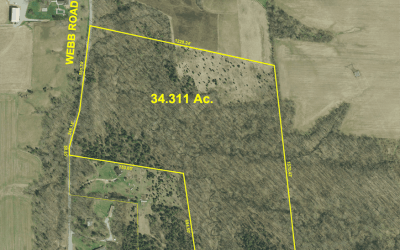 34 acres Webb Rd Auction