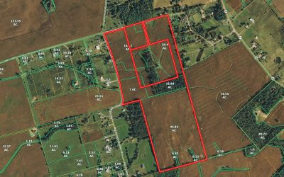 87.5 Acres Pleasant Chapel Rd. Clark County