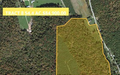 54.4 Acres SR 772 Pike County