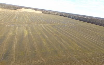 411 Acres Clermont County Auction