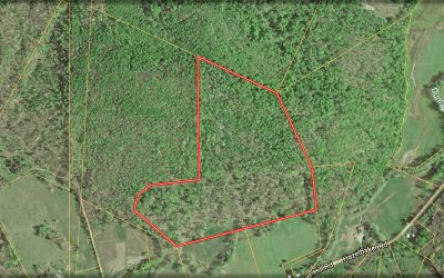 49.667 Acres Dunlap Road