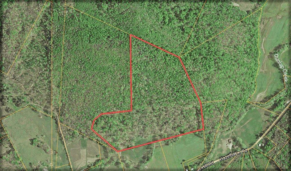 49.667 Acres Dunlap Road