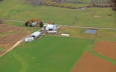 175 Acres Carter Corner Rd Auction