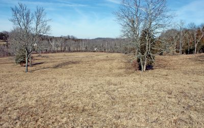 230 Acres State Route 41 Auction