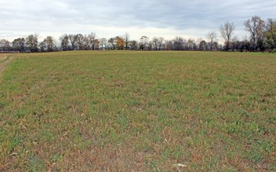 188 Acres US 36 Auction