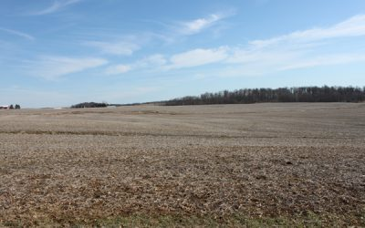 323 Acres Stevenson Rd Auction