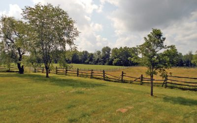 98 Acres State Route 257 Auction