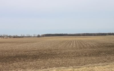 517 Acres US 42 Auction