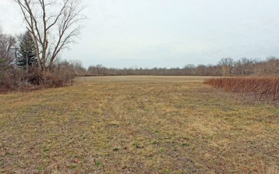 340 Acres US 23 Auction