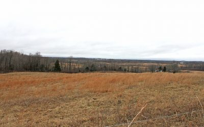 48.42 Acres Highland County