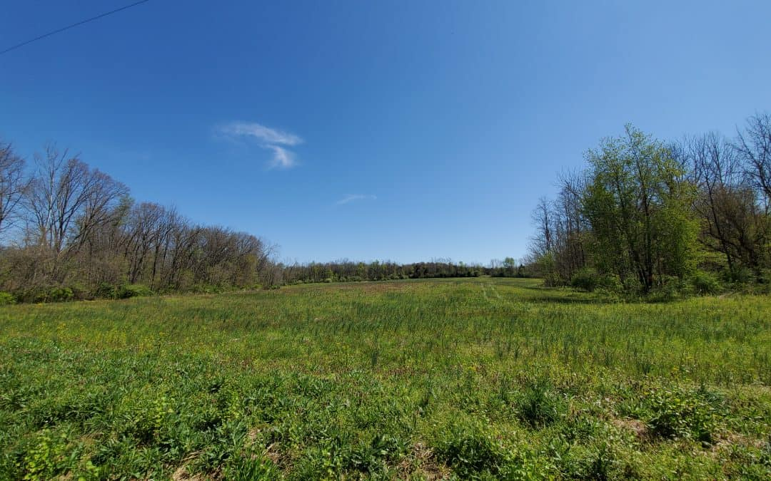 47.7+/- Acres Recreational Land in Highland County