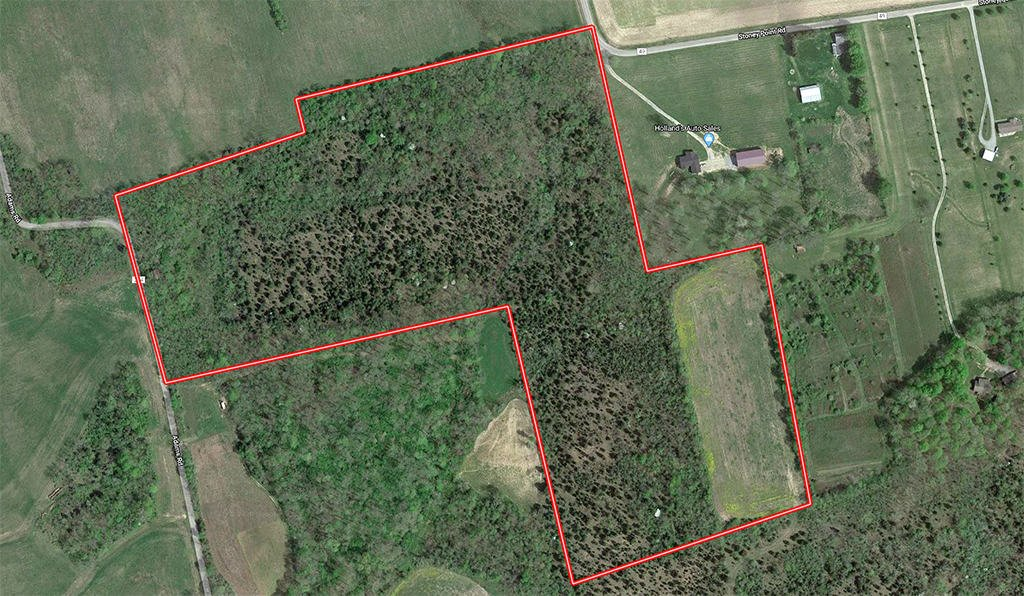 37 Acres Highland County Recreational Land