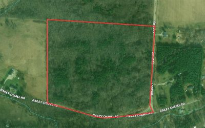 32.9 ACRES VACANT LAND BAILEY CHAPEL ROAD, PIKE COUNTY
