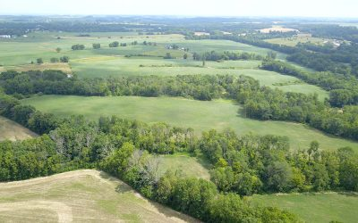 83.69 Acres Vacant Land Fayette County