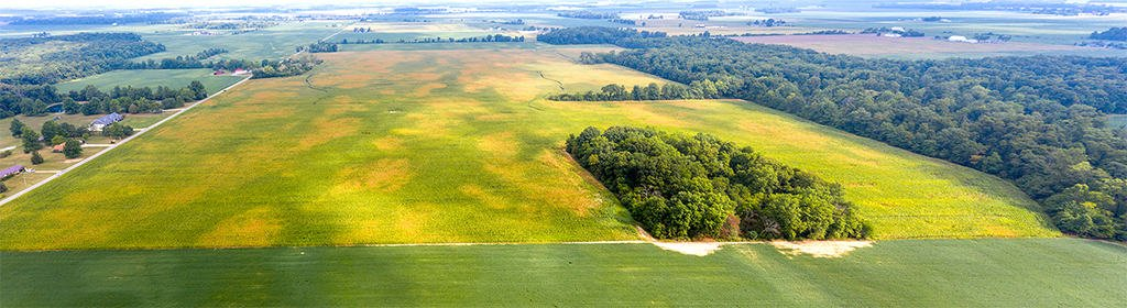 AUCTION: OCTOBER 2020 – 115 ACRES VACANT LAND, MERCER CO.