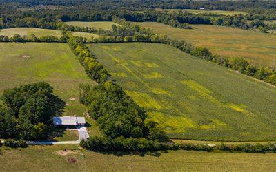 40 Acre Turn Key Farm in Champaign County
